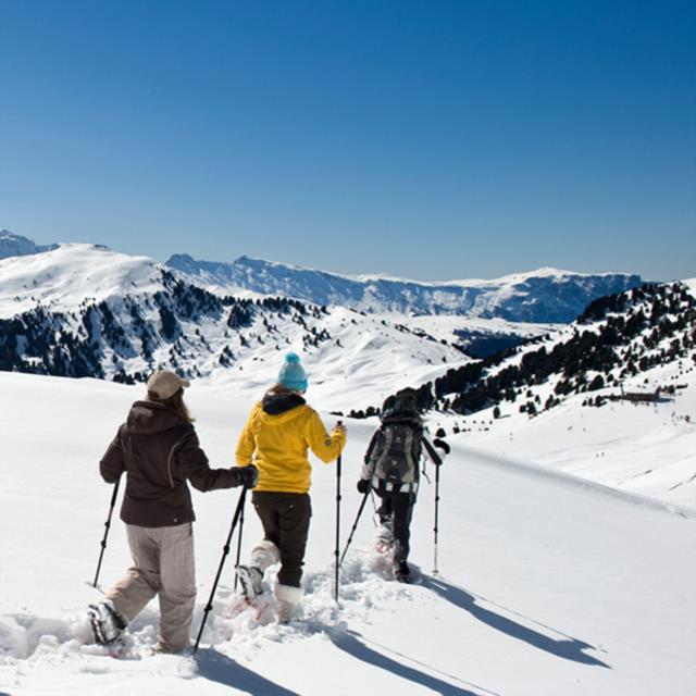 Snowshoeing & Alpine skiing